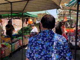 Horario de Ferias Libres en Puente Alto